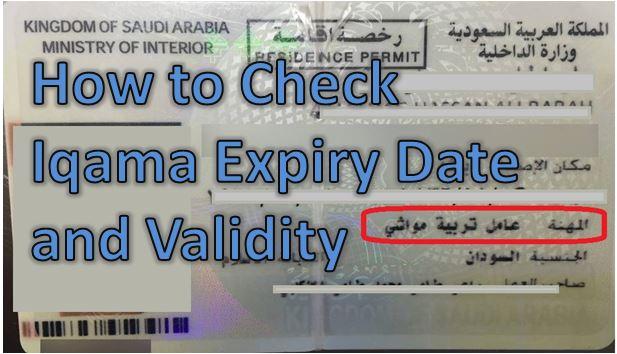 Saudi arabia online dating