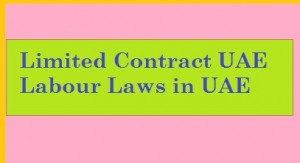 limited contract means in uae