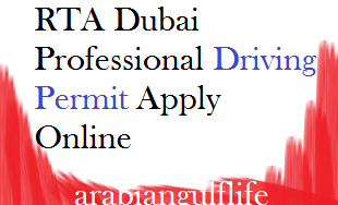 professional-driving-permit-apply-online