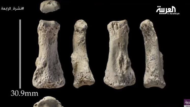 Oldest Human bones found in Saudi Arabia
