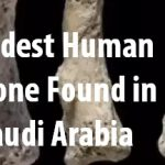 Ninety Thousand Year Old Human Bone Found in Saudi Arabia