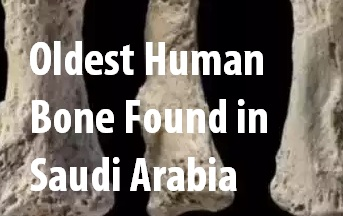 Ninety Thousand Year Old Human Bone Found in Saudi Arabia