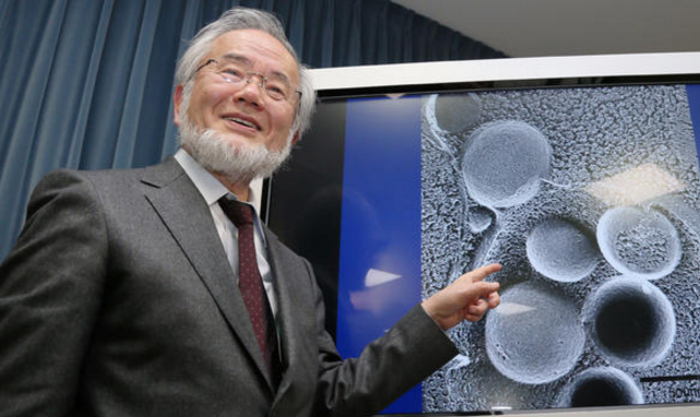 japanese-scientist-noble-prize-winner-yoshinori-ohsumi