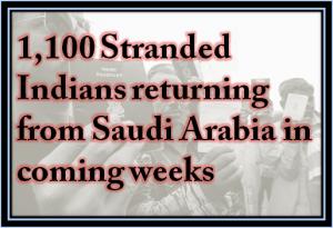 indian-stranderd-worker