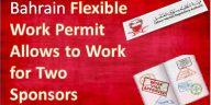 flexible-work-permit