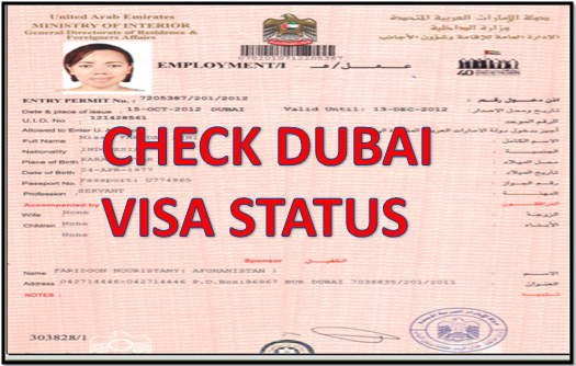 CHECK DUBAI VISA STATUS