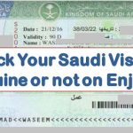 Check Saudi Visa Status On EnjazIT Expats Guides
