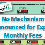 No Mechanism Announced for Expat Monthly levy
