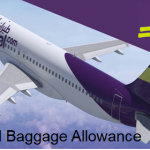 Flyadeal Baggage Allowance